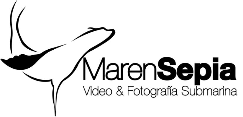 logo_MES.jpg